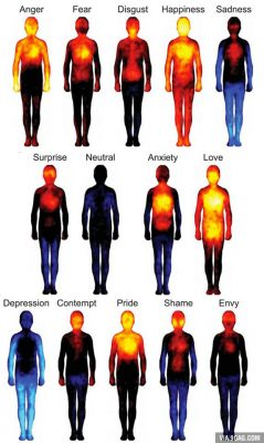 Sensations in different parts of our body when we experience emotions. 9GAG