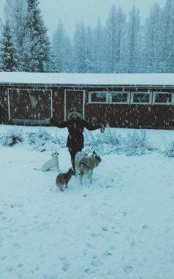 Vielä viime viikolla saatiin lunta!