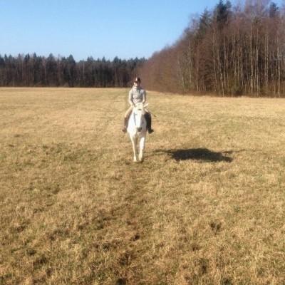 Virossa ratsastusleirillä