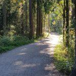 Luonto on tärkeä voimavara minulle. Töiden jälkeen useimmiten kävelen puiston halki kotiin ja tyhjennän pääni työpäivän päätteeksi.