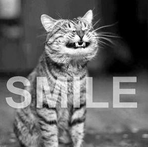 kisun hymy